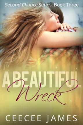 A Beautiful Wreck